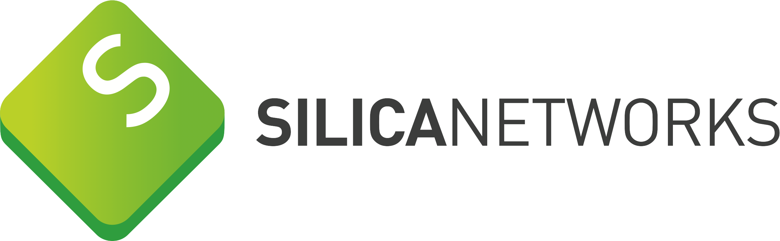 Silica Networks